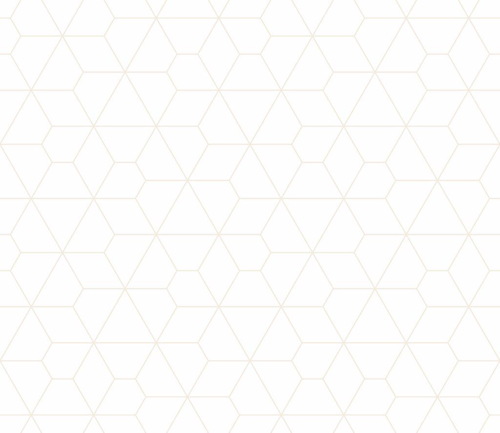 Prix Champlain 2020 : Poupée de rouille de David Ménard finaliste